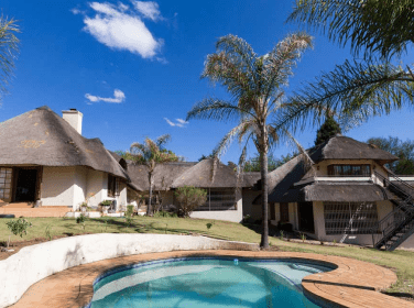 palm trees pool thatch roof